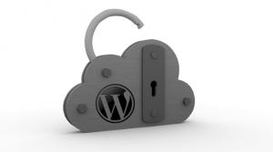 wordpress-security33