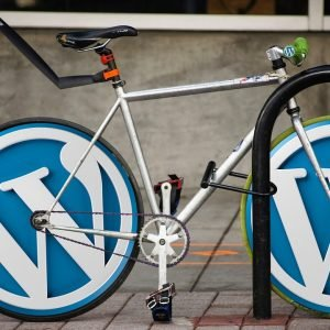 Why WordPress - examples of